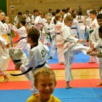 sltkd junior taekwondo students